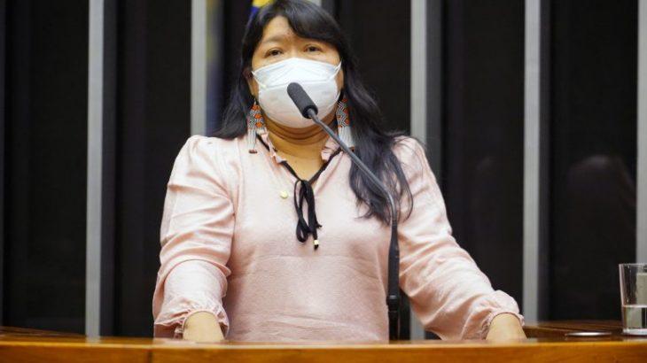 Congresswoman Joenia Wapichana demanded more attention for indigenous health (Photo: Pablo Valadares/Agência Câmara)