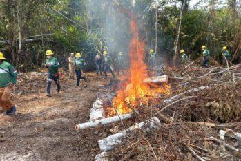 Rondônia, segundo a pesquisa, foi responsável por 2.102 focos de queimadas no período analisado (Divulgação/Sema)