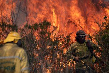 Bombeiros atacam as chamas que, no ano passado, consumiram área de rica biodiversidade na Chapada Diamantina, Bahia (Mateus Morbeck/AFP)