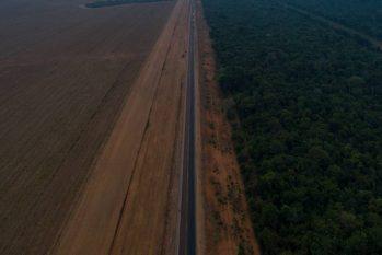 Rodovia corta a Floresta Amazônica em Sinop, Mato Grosso (Caio Guatelli)