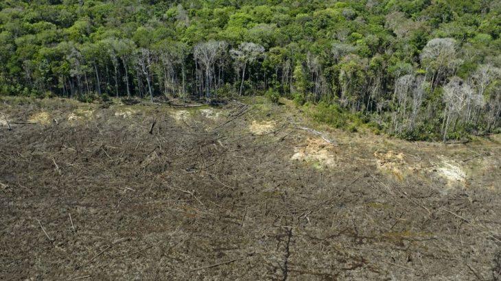 Foto aérea tirada no dia 7 de agosto mostra área desflorestada da Amazônia, em Sinop (MT). (Florian Plaucheur/ AFP)