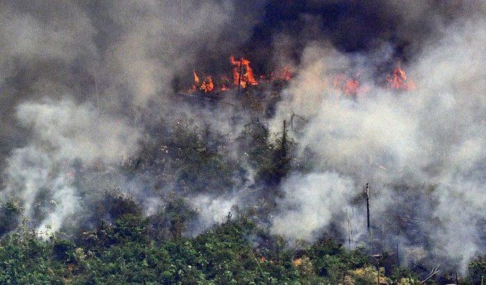 Uma parte da Floresta Amazônica sendo consumida pelas queimadas ilegais (Carl de Souza/AFP)