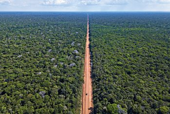 Drone view of the BR-319 highway between Igapó-Acú and Realidade. The highway, which is not paved, is the only access by land that connects Manaus to the rest of the country. (Lalo de Almeida/ Folhapress)