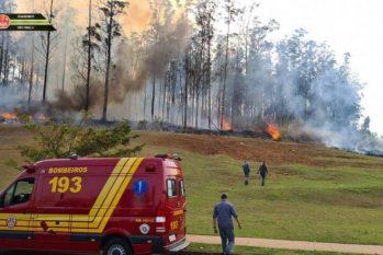 Aeronave caiu em área verde de Piracicaba em São Paulo. (Corpo de Bombeiros/ Divulgação)