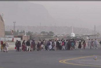 Afegãos se aglomeram na busca de uma vaga em avião para fugir de Cabul. Foto: Reprodução/ Twitter