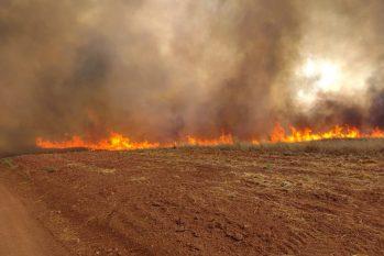 Em três dias tiveram três focos de incêndio na região rural de Tocantins (João Carlos/Defesa Civil)