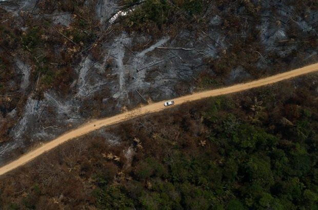 O desmatamento acumulado entre agosto de 2020 a julho de 2021 é 51% maior que o registrado entre agosto de 2019 e junho de 2020 (Foto: Nur Photo / Getty Images)