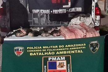 A apreensão ocorreu, na noite da terça-feira, 7, durante ações da operação Hórus, na zona Sul da capital (Divulgação/PMAM)
