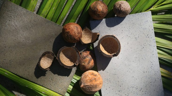 The tucumã shell is composted. Ice cream, tapioca, and butter are made from the pulp. From the almond, oil is extracted for cosmetics and pharmaceuticals, and the stone is transformed into plastic wood. (Ricardo Oliveira/Cenarium)