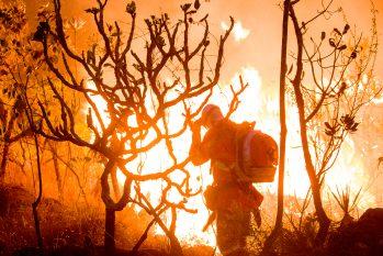 Brigadistas da Rede contra o Fogo combatem as queimadas no Parque Nacional da Chapada dos Veadeiros, em Goiás (João Paulo Guimarães/CENARIUM)