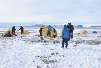Constatação ocorreu durante expedição entre 2015 e 2016 (Assessoria de comunicação do Museu Nacional)