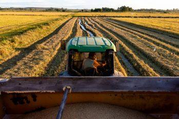 Certificado do agronegócio para agricultura familiar abre caminho para nova frente de atuação dos investidores em movimentos sociais (Reprodução)