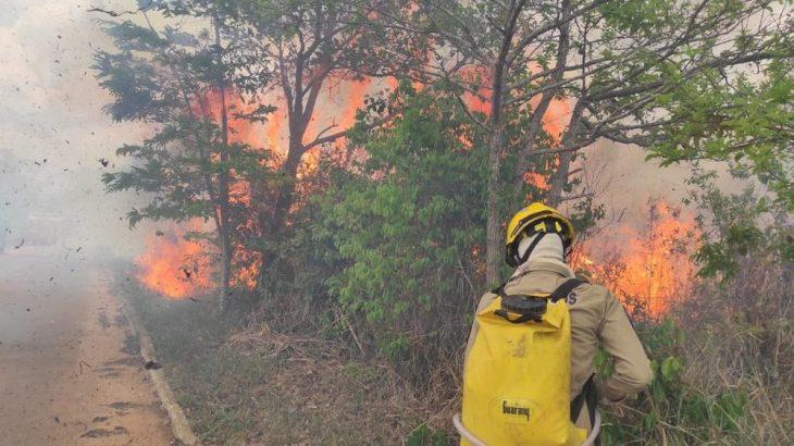 Focos de queimadas no Acre. (Bombeiros do Acre/ Divulgação)