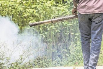 Dumping chemicals in rural areas: damages to the environment and human health (Shutterstock/GrooTrai)